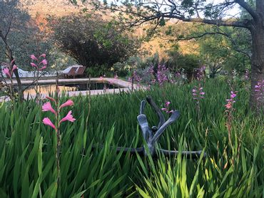 Stone sculptures and a natural pool at Wildekrans Guesthouse – night 3 and 4 of the Green Mountain hiking trail.