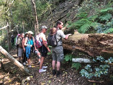 Learning about the fungi lifecycle on the Fynbos trail, near Standford, Western Cape.